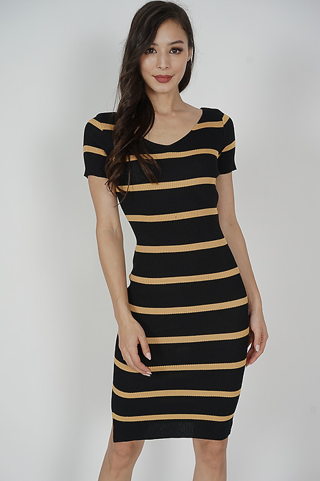 Heiza Striped Dress in Black - Online Exclusive