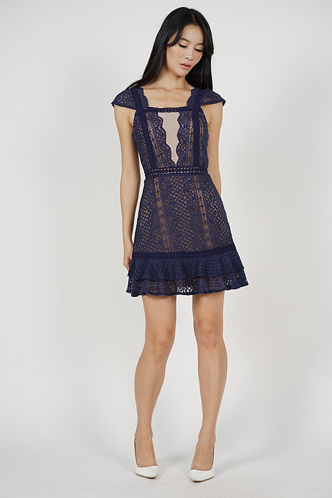 Lace Mesh Dress in Midnight