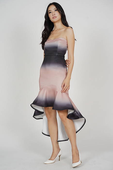 Franka Mermaid Dress in Black Nude