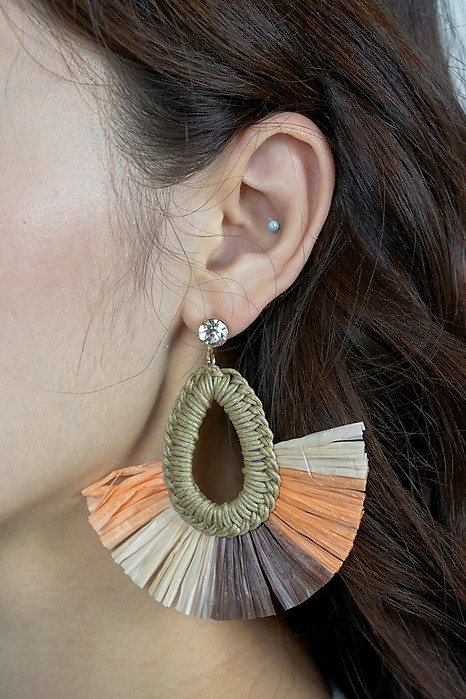 Haydin Earrings in Brown - Arriving Soon