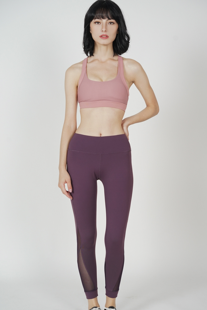 Dacee Mesh Gym Tights in Plum - Arriving Soon