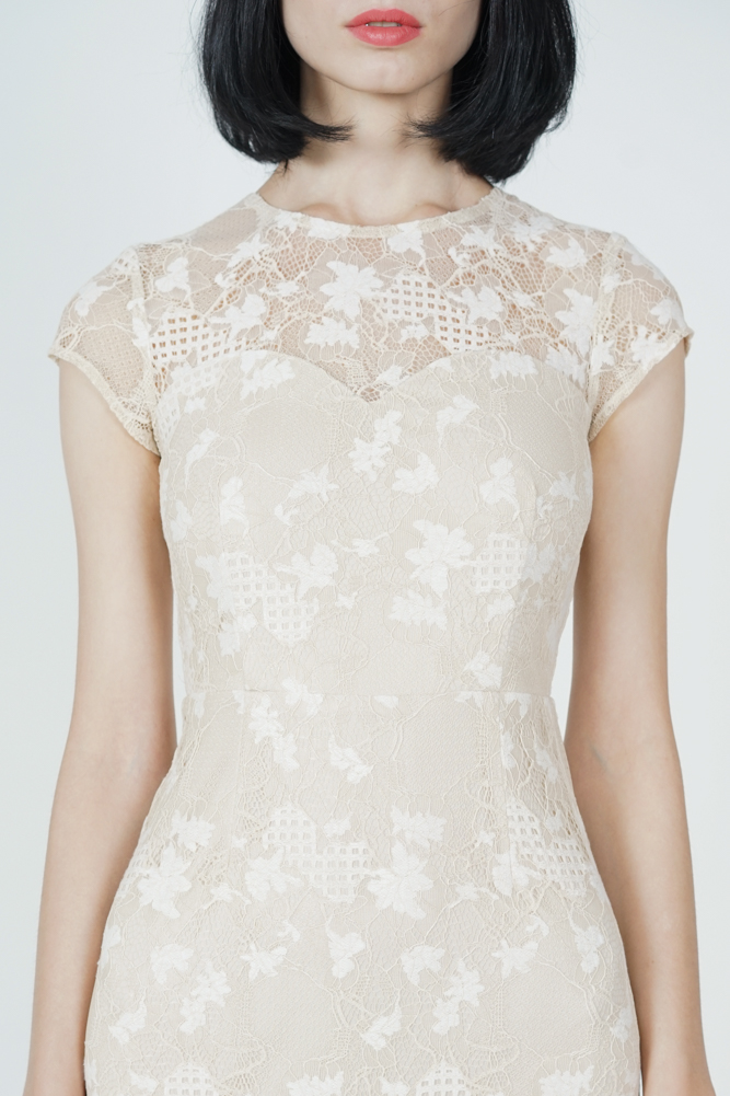 Everly Lace Dress in Cream