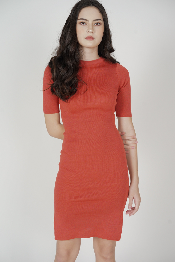 Brinley Sleeved Dress in Rust